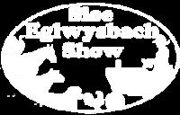 Eglwysbach Show
